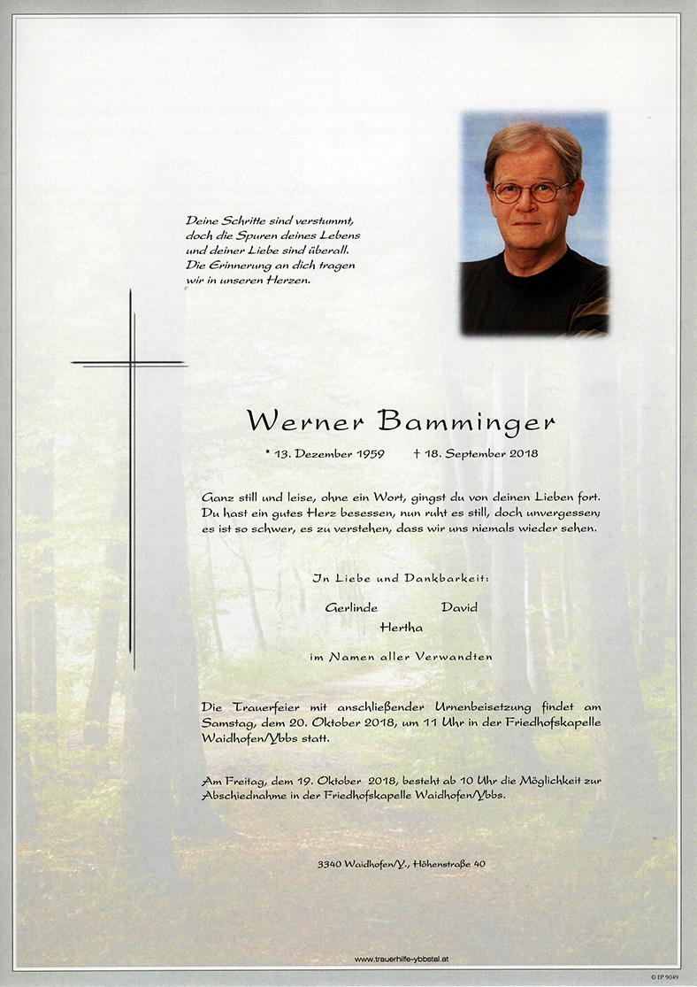 Parte Werner Bamminger