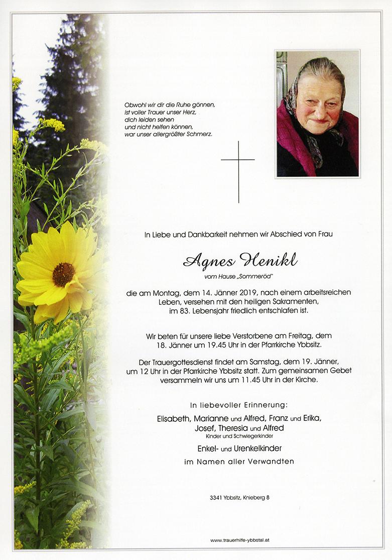 Parte Agnes Henikl