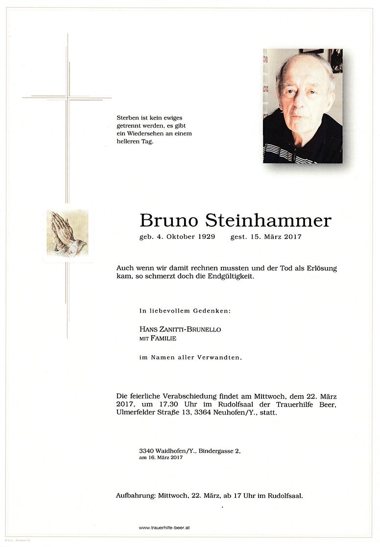 Parte Bruno Steinhammer