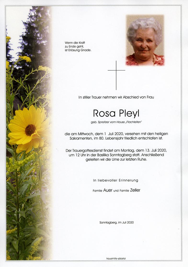 Parte Rosa Pleyl